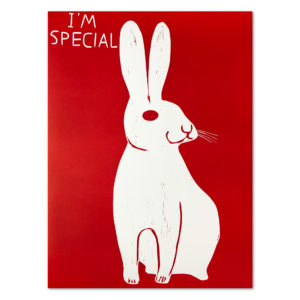 David Shrigley, I'm Special