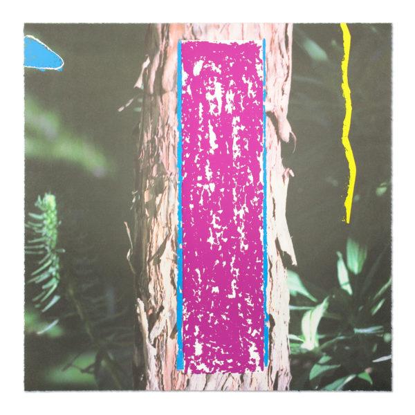 John Baldessari, Tree