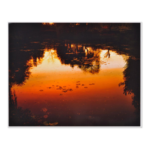 Elger Esser, Nocturnes à Giverny
