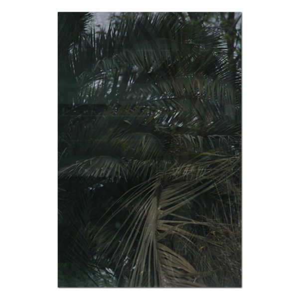 Eberhard Havekost, Jungle B08