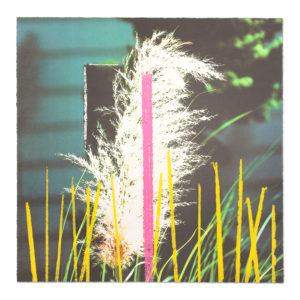 John Baldessari, Grass