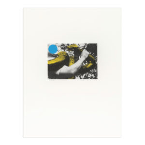 John Baldessari, Man with Snake