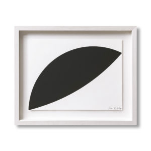 Ellsworth Kelly, Two Curves
