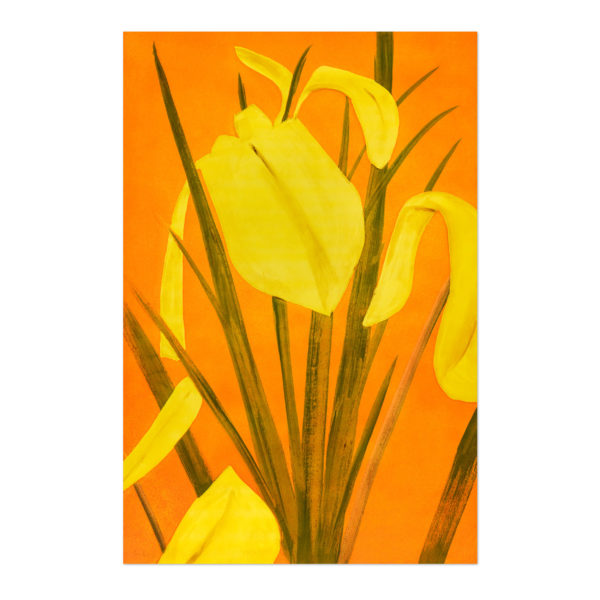 Alex Katz, Yellow Flags 4