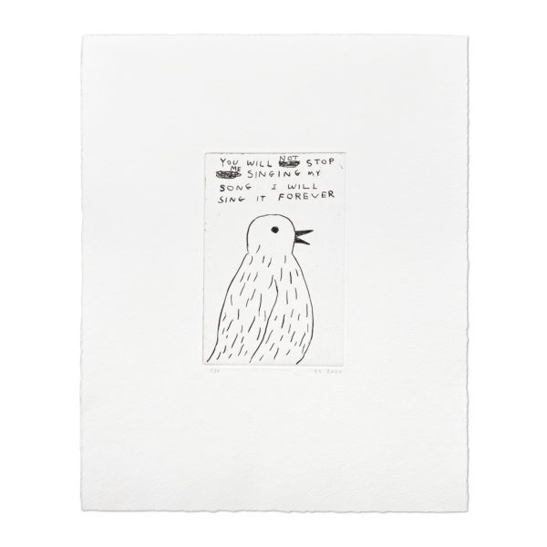 David Shrigley, You Will Not Stop Me Singing...